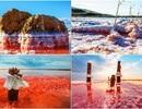 Rực rỡ khu đầm muối tuyệt đẹp ở bán đảo Crimean